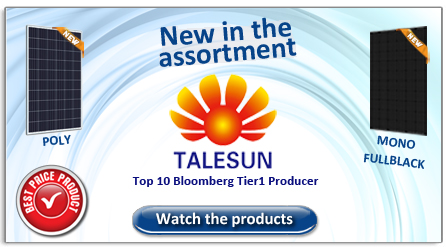 Talesun new in the assortment